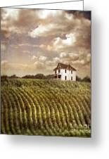 Farmhouse And Cornfield Greeting Card