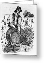 Farming: Corn Husker Greeting Card