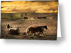 Farming Rain Race Greeting Card