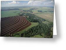 Farming Region With Forest Remnants Greeting Card