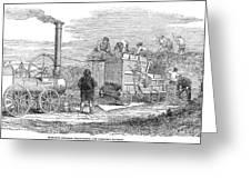 Farming: Threshing, 1851 Greeting Card
