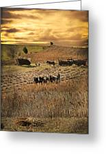 Farming To Beat The Storm Greeting Card