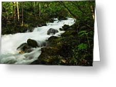 Fast Water Greeting Card