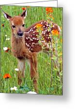 Fawn In Flowers Greeting Card