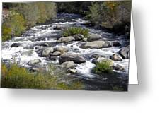 Feather River White Water Greeting Card