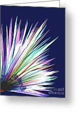 Featherlight Greeting Card