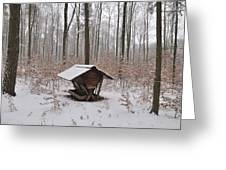 Feed Box In Winterly Forest Greeting Card