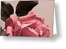 Feel The Love Greeting Card