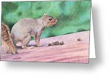 Feelin' Alittle Squirrely Greeting Card