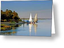 Feluccas On The Nile Greeting Card