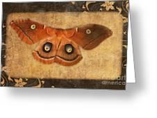 Female Moth Greeting Card