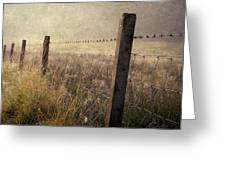 Fence And Field. Trossachs National Park. Scotland Greeting Card
