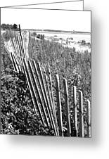 Fence On The Beach Greeting Card