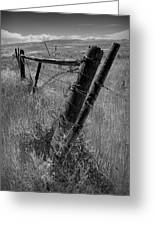 Fence Posts And Barbed Wire At The Edge Of A Field In Montana Greeting Card