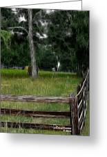 Fenced In Field Greeting Card