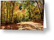 Fenced Path Through Autumn Forest - Blacksmith Fork Canyon - Utah Greeting Card