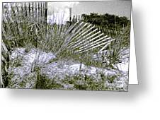 Fences In Duotone Greeting Card
