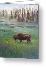 Ferdinand Yellowstone Np Greeting Card by Karin  Leonard