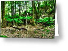 Fern Grove Greeting Card