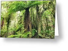 Fern Tree Greeting Card