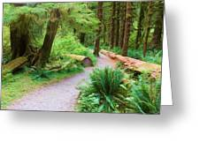 Ferns And Mosses Greeting Card
