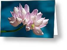 Fetch Flower Greeting Card