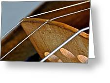 Fiddle Strings Greeting Card