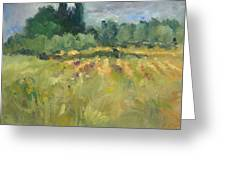 Field In Italy Greeting Card