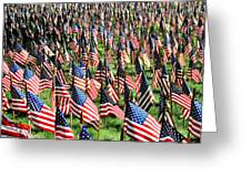 Field Of Flags Greeting Card