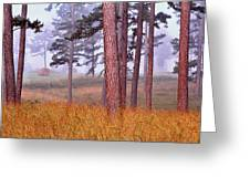 Field Pines And Fog In Shannon County Missouri Greeting Card