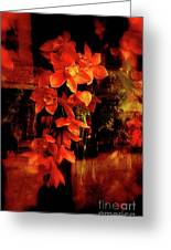 Fiery Ladies Greeting Card