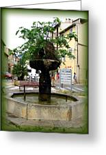 Fig Tree Fountain In Cassis Greeting Card