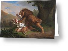 Fight Of A Lion With A Tige Greeting Card