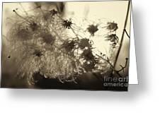 Filaments Greeting Card