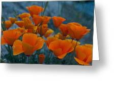 Fill The Frame With Poppies Greeting Card