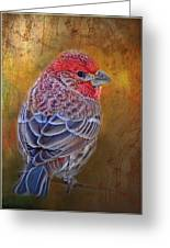 Finch With Gold Texture Greeting Card