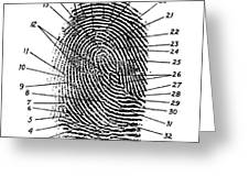 Fingerprint Diagram, 1940 Greeting Card
