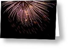 Fireworks Fun 14 Greeting Card