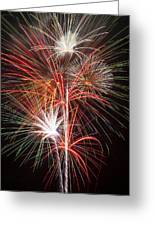 Fireworks Light Up The Night Greeting Card by Garry Gay