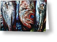 Fresh Fish At The Market Greeting Card