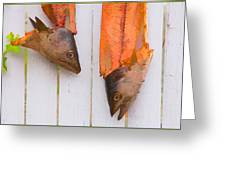 Fish Heads Greeting Card