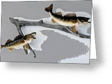 Fish Mount Set 03 C Greeting Card