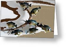 Fish Mount Set 05 C Greeting Card