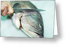 Fish Preparation Greeting Card