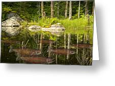 Fisherman's Dream Trout Pond Greeting Card