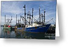 Fishing Boats At Dock Greeting Card