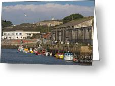 Fishing Boats Hayle Harbour Greeting Card