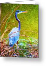 Fishing In The Reeds Greeting Card