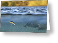 Fishing Lure In Use Greeting Card
