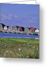 Fishing Shacks Line The Bay At Malpeque Greeting Card